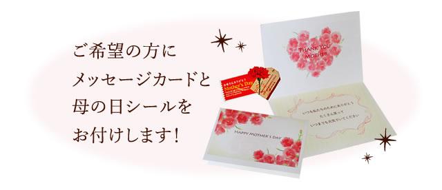 ご希望の方にメッセージカードと母の日シールをお付けします!