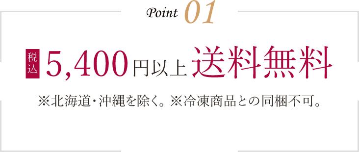 5,400円以上送料無料