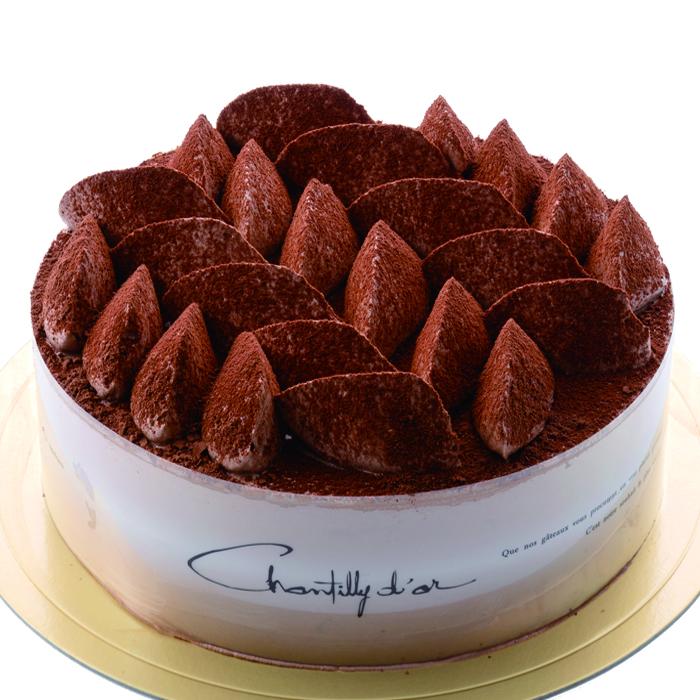 卵・乳・小麦不使用 Xmas チョコレートケーキ《冷凍発送》