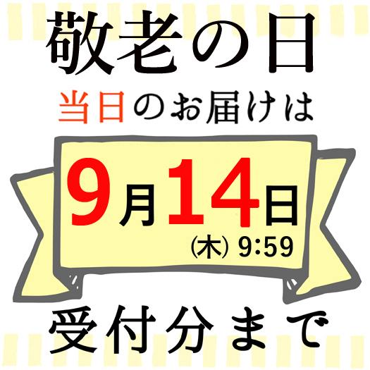 /img/item/kr/s_furosiki_op.jpg